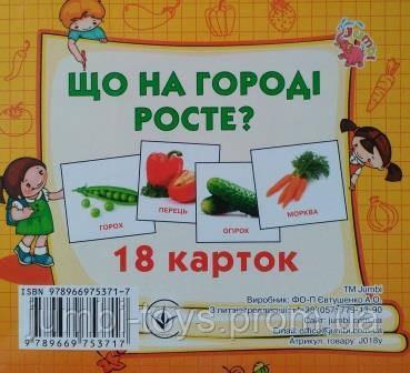 Картки міні (18 карток): Що росте на городі  (у)