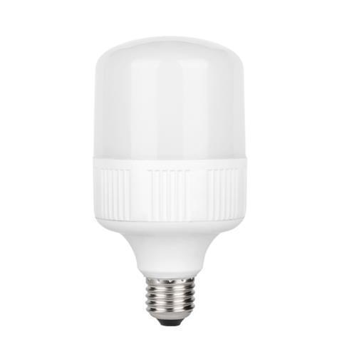 Светодиодная LED лампа TORCH-20-6K