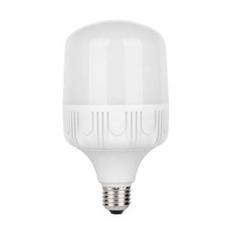 Светодиодная LED лампа TORCH-30-6K, фото 2