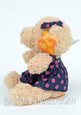Мягкая игрушка  Мишка Тедди-девушка ( на присоске), фото 3