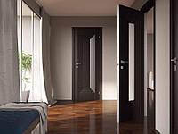 Двери межкомнатные с ПВХ покрытием Renolit Германия FRANCESKA стекла сатин