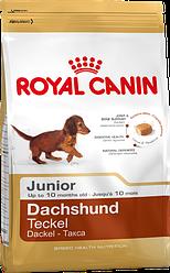 Royal Canin Dachshunt Junior 1,5 кг - Полнорационный корм для щенков породы такса в возрасте до 10 мес