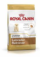 Royal Canin Labrador Retrivier Junior 12 кг -Полнорационный корм для щенков породы лабрадор в возрасте до 15 м