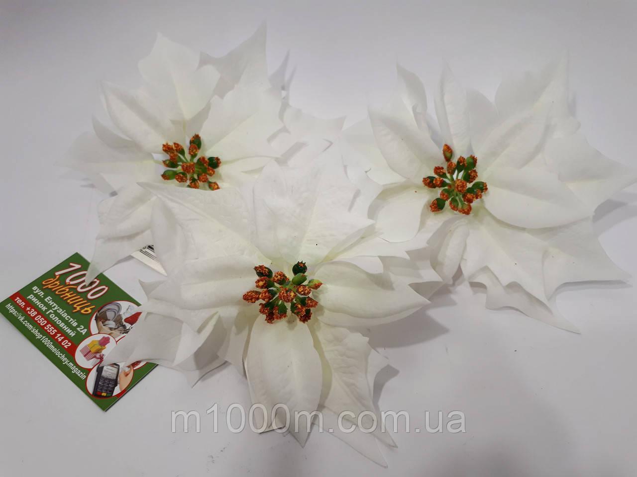 Рождественник (Пуансетия) Белый 1397H 75510