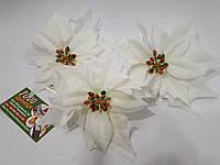 Рождественник (Пуансетия) Белый 1397H 75510, фото 1
