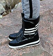 Женские зимние дутики черные в стиле Adidas  №42