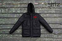 Черная Мужская зимняя куртка/парка адидас (Adidas)