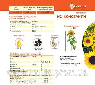 Подсолнечник HC Константин