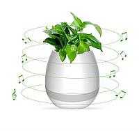 Портативная колонка Flower Pot (Светомуз, Bluetooth, FM) white