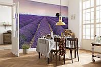 XXL4-036 Provence ФЛИЗЕЛИНОВЫЕ фотообои на стену