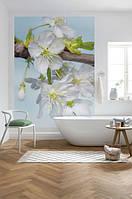 Komar XXL2-033 Blossom ФЛИЗЕЛИНОВЫЕ фотообои на стену