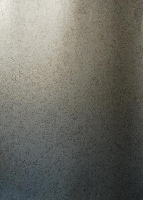 Бумажные обои  EIjffinger Baltimore Арт. 306018