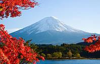 Фотообои Величественная Фудзияма