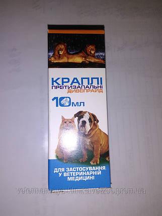 Капли глазные ,интраназальные Диво Прайд10мл.(для мелких домашних животных), фото 2