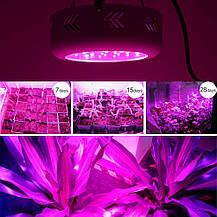 Фитопанель для растений 90W (30LEDx3W), фото 3