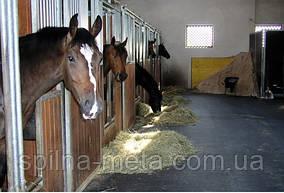 Товари для лошадей