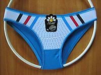 Трусики-плавки женские хлопковые. Голубые 44-46