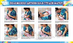 Стенд. Положення дітей біля грудей матері. 0,6х1,0. Пластик