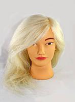 Голова натуральная тренировочная для моделирования причесок