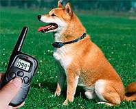 Многофункциональный (4 в 1) электронный ошейник для дрессировки и обучения собак.