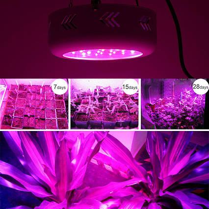 Фитопанель для растений 138W (46LEDx3W), фото 2