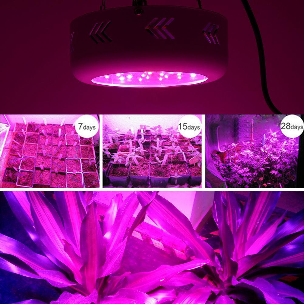 Фитопанель для растений 138W (46LEDx3W) - LED-Expert: компьютерная и бытовая техника (телевизоры, ноутбуки, планшеты), фитолампы для растений в Киеве