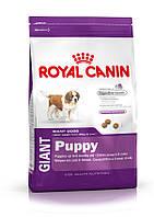Royal Canin Gigant Puppy 15 кг - для щенков очень крупных размеров (вес взрослой собаки более 45 кг) в возраст