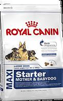 Royal Canin Maxi Starter 15 кг - для щенков крупных размеров  в период отъема до 2-мес возраста