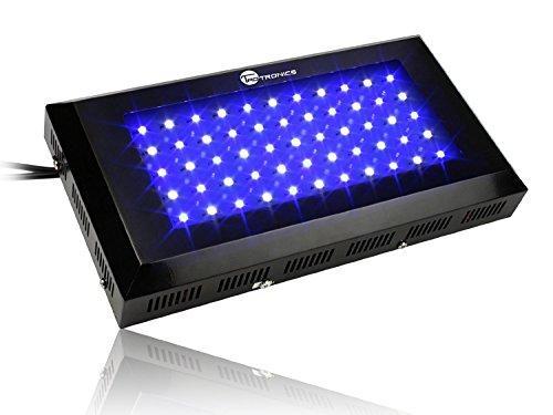 Фитопанель для  растений 165W (55LEDx3W) бело-синий спектр - LED-Expert: компьютерная и бытовая техника (телевизоры, ноутбуки, планшеты), фитолампы для растений в Киеве