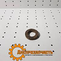 Сальник рычага рулевого  ЮМЗ   36-3001038-Б, фото 1