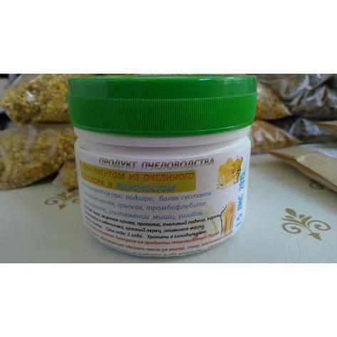Пчелопродукт с живокостом и перцем  10% фасовка 50 мл. мазь, фото 2
