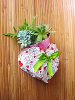 Букет з живих рослин