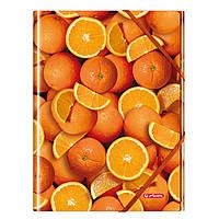 Папка А4 на резинках, пластиковая, Orange