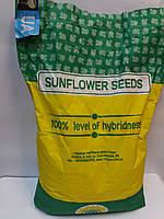 Подсолнечник под гранстар НЕО, Устойчив к жаре и заразихе A-F, Урожайный гибрид.
