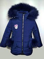 Зимнее пальто на девочку Кира с натуральным мехом Размеры 26- 34 Цвет Синий