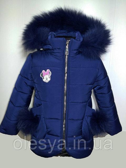 Зимнее пальто на девочку Кира с натуральным мехом Размер 34 Цвет Синий