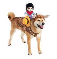 """Смешной костюм для собаки """"Всадник +шапочка с рогами"""""""