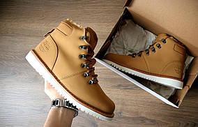 Зимние мужские ботинки Timberland beige