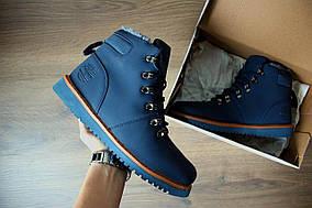 Зимние мужские ботинки Timberland dark-blue