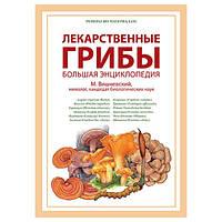 Научный реферат Лекарственные грибы