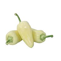 ХАСКИ F1 / HASKI F1 - перец сладкий, Enza Zaden 500 семян