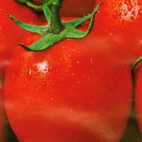 РОМА / ROMA  — томат детерминантный, Satimex 10 грамм