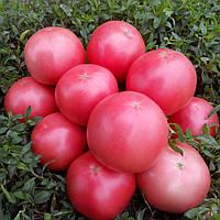 ПИНК СВИТНЕС F1 / PINK SVITNES F1  — томат детерминантный, Lark Seeds 500 семян