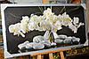 """Картина """"Білі орхідеї"""""""