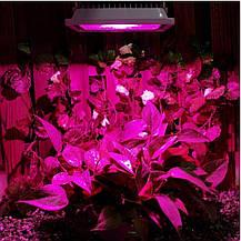 Фитопрожектор для растений 60W 30LED, фото 2