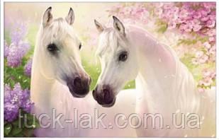 Алмазная вышивка, белые лошадки 40х30 см, частичная выкладка НА ПОДРАМНИКЕ 33х24 см