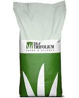 РАЙГРАС МНОГОЛЕТНИЙ - газоннаяя травосмесь, DLF Trifolium 1 кг