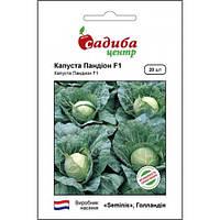 ПАНДИОН F1 / PANDION F1 — капуста белокочанная, Seminis (Садыба Центр) 20 семян