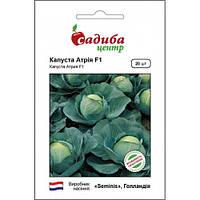 АТРИЯ F1 / ATRIA F1 — капуста белокочанная, Seminis (Садыба Центр) 20 семян