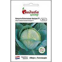 АМТРАК F1 / AMTRAK F1 — капуста белокочанная, Bejo (Садыба Центр) 20 семян